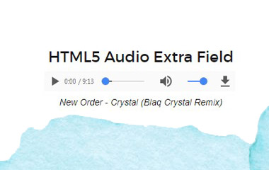 JXTC HTML5 Audio Custom Field